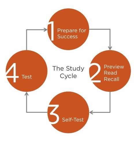 essay on study smart