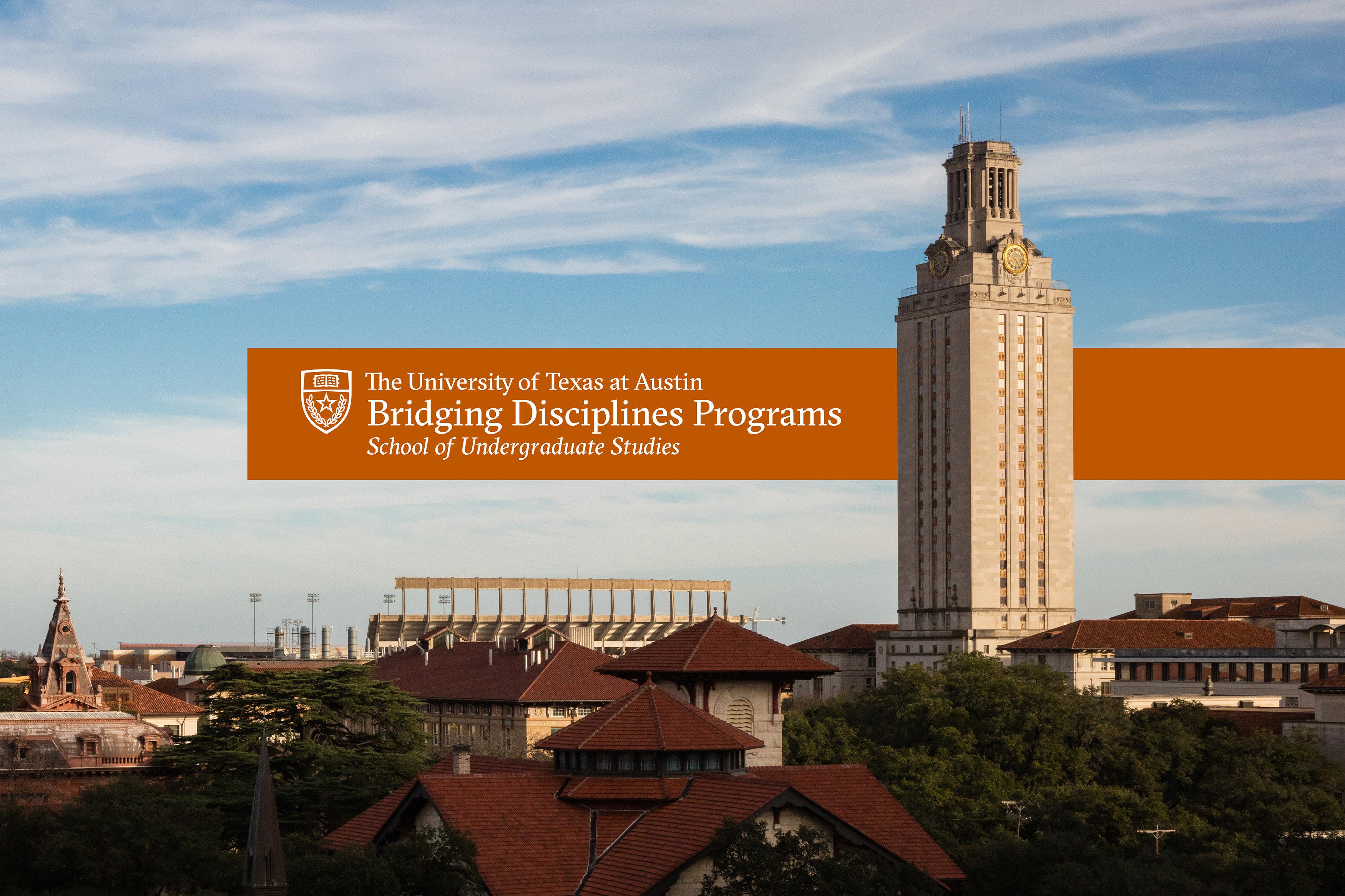 The Bridging Disciplines Programs