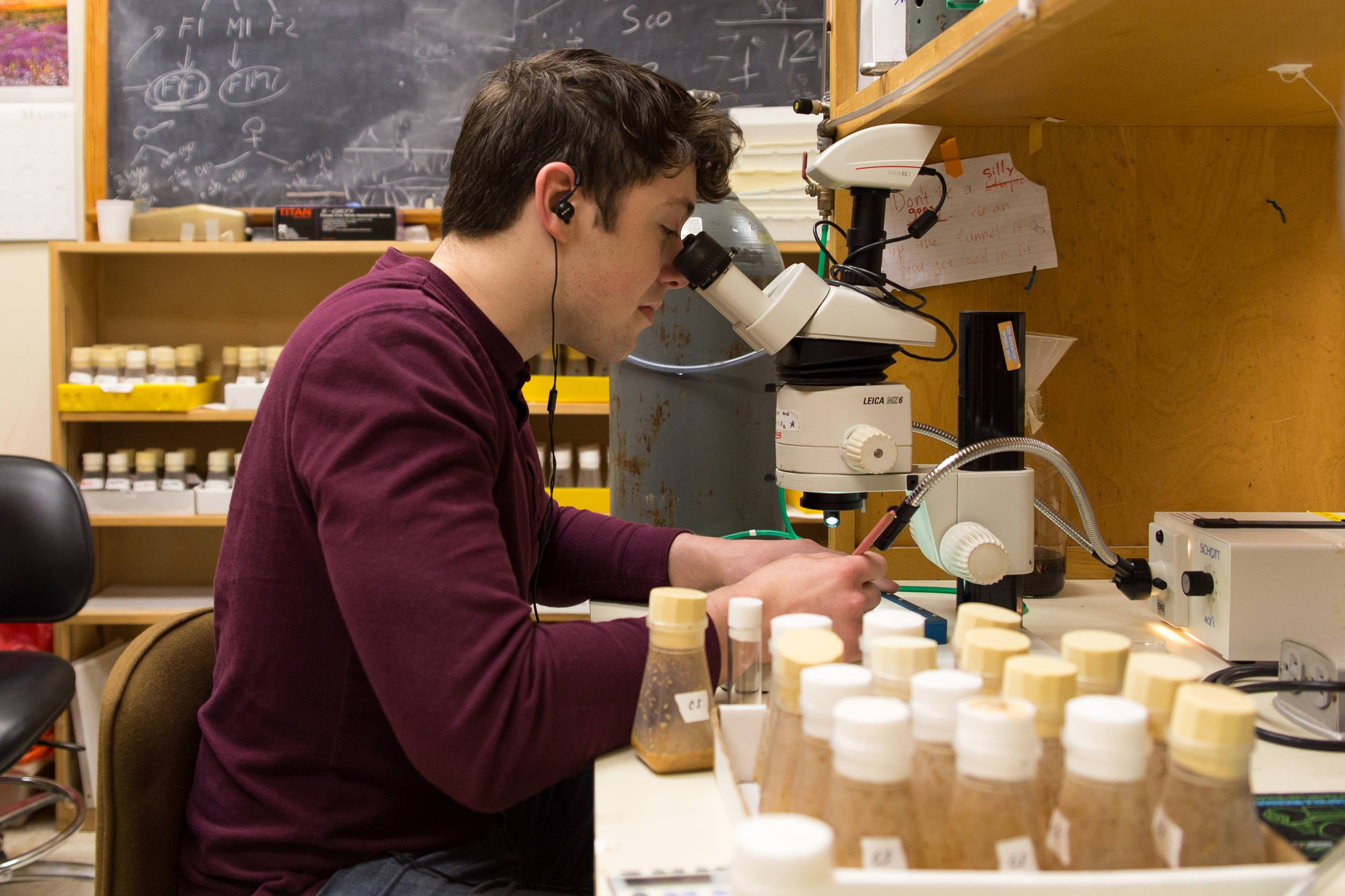 A Student Conducts Research