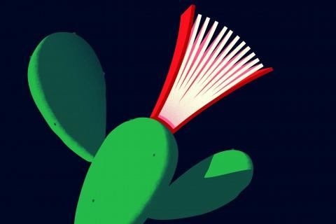 Freshman Reading Round-Up 2017 Cactus Poster