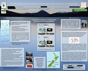 STEM sample poster